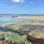 星砂の浜6
