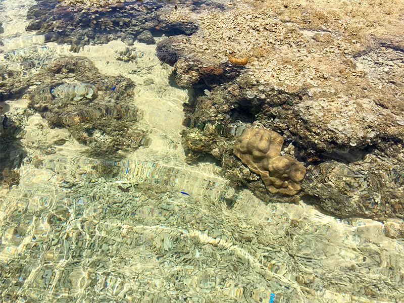 星砂の浜7