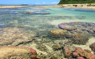 星砂の浜9
