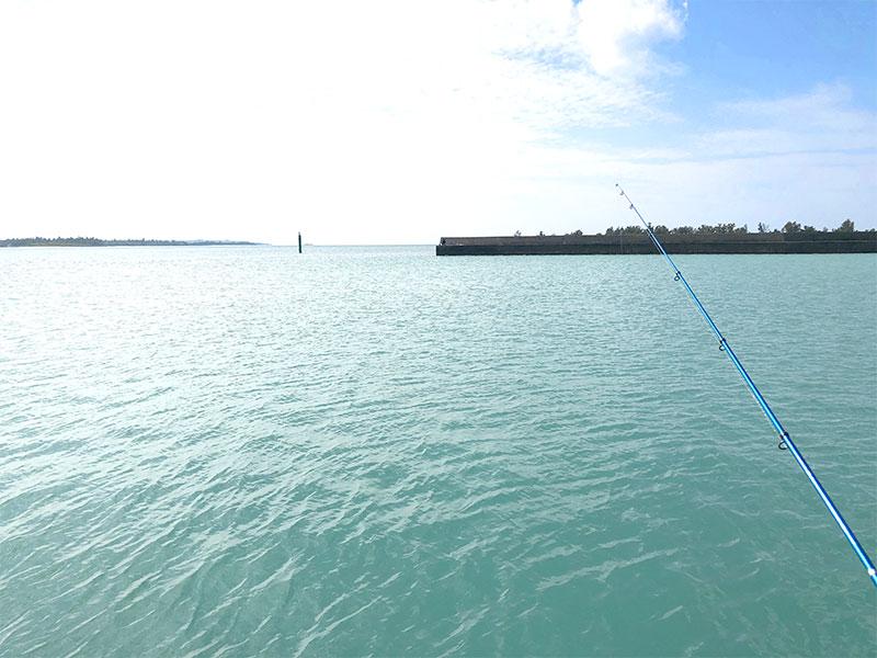 久しぶりの防波堤釣り